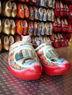 Klompen (clogs/wooden shoes)