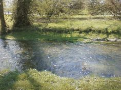 Greenwood Indiana during the Spring. (little stream by the library)