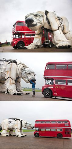 After the giants in liverpool we soooo need a giant polar bear :)  'AURORA,' CHRISTOPHER KELLY'S MASSIVE POLAR BEAR PUPPET