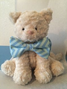 The cute Teddy and the Chevron print powder and pale blue bowtie!