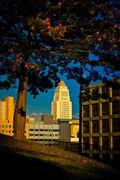 Los Angeles City Hall - Autumn Haze    Taken from the public park beside Angels Flight.