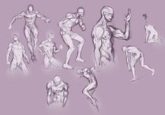 Hard perspective anatomy references for males by SirWendigo on ...