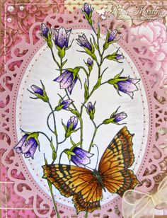 Harebell Butterfly