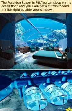 Poseidon Resort in Fiji. You can sleep on the ocean floor, and you even get a button to feed the fishies right outside your window. i usually dont pin resorts or hotels. Hotel Subaquático, Das Hotel, Hotel Dubai, Dubai Trip, Dubai Vacation, Hotel Soap, Hotel King, Greece Vacation, Dubai City