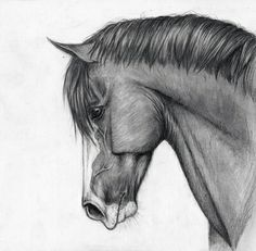 cheval, cute, dessin, drawing, horse, noir et blanc, profil, wonderful