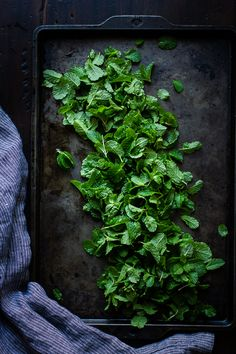 The Bojon Gourmet: Matcha Mint Chip Ice Cream Drying Mint Leaves, Mint Chip Ice Cream, Bojon Gourmet, Dark Food Photography, Cocktails, Drinks, Matcha Green Tea, Medicinal Herbs, Fresh Herbs