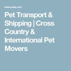 Pet Transport & Shipping | Cross Country & International Pet Movers