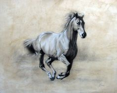 nicola eddery. Charcoal and chalk on toned paper, 36 x 30 ins.