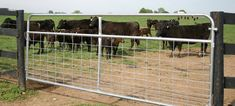 Tarter Farm & Ranch Equipment: Farm Gates, Animal Management, Rodeo, Equine, animal Handling, Roping & Arena, Cattle, ATV, Goat, Horse.  Won't let me pin the individual feeders, but has several horse ones