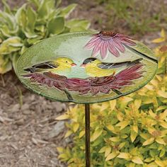 "Bird Bath Stake Finches Coneflower in Glass by Evergreen Enterprises, Inc. $22.24. A beautiful addition to your garden. 11""L x 26""H (with stake). Use as a traditional birdbath or fill with seed. Durable/high quality glass. Includes 2-piece metal stake. EG2GM322 Features: -Bird bath stake.-Material: Glass. Dimensions: -Dimensions: 11.3'' H x 11.3'' W x 24.8'' D.. Save 30% Off!"
