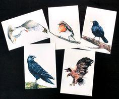 Fåglar i A5 - välj 3st