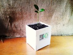 DIY Smart Plant pot - Tells you when the plant is thirsty
