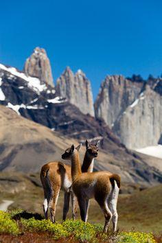 Torres del Paine, Patagonia, By Lenticular Travelfar.