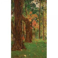 AUGUSTIN SALINAS (Saragoça - Espanha, 1860 -1862 / Roma - Itália, 1823) - Floresta - Rio de Janeiro