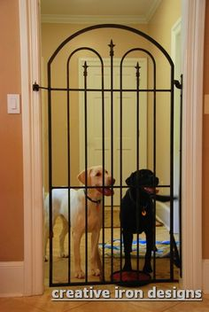 Wow, if you need to gate off your dog occasionally this is the way to do it! Wow, if you need to gate off your dog occasionally this is the way to do it! Animal Room, Baby Gates, Dog Rooms, Iron Gates, Yorkies, Dog Houses, Labradoodle, Dog Friends, Dog Bed