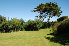 Picture 4 Detached House for sale Prosper Hill, Gwithian, Hayle, Cornwall TR27 5BW