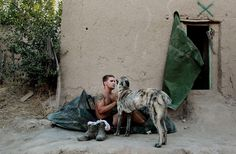 Sgt. John Barton of the 4th Brigade of the US Army's 82nd Airborne Division pets his platoon's pet dog Ray-Ray as he awakens from sleeping outside at combat outpost Impala June 29, 2010 in Bala Murghab, Afghanistan.  Many US troops in Afghanistan sleep in the outdoors in the summer due to the stifling overnight heat.  The 82nd Airborne along with NATO Italian troops have been working for nearly a year in this combative zone in the far northwest of the country near the Turkmenistan border.