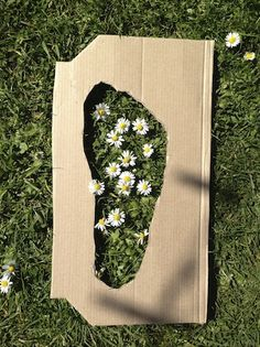 Daisy Footprints – Maths Outdoors | Creative STAR Learning | I'm a teacher, get me OUTSIDE here!