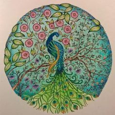 Johanna Basford Secret Garden Gardens Book Coloring Books Adult Peacock