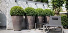 grand cache-pot extérieur de design conique en ciment pour exhiber les boules de buis avec style