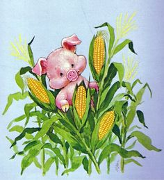 PIG AND CORN - they go together like a horse and carriage  ! ! ! ! !