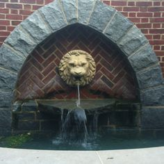 Lion fountain at University of Richmond. Love this fountain.