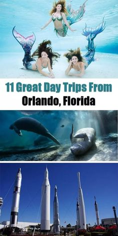 11 Great Day Trips from Orlando Florida. Whether youre passing through Florida on a road trip or are looking for a break from the amusement parks in Orlando youll find lots of great adventures just an hour or two outside of this city. Viaje A Orlando Florida, Orlando Parks, Orlando Travel, Orlando Vacation, Florida Vacation, Florida Travel, Travel Usa, Travel Tips, Travel Ideas