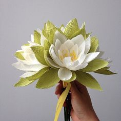 18 months and ageing gracefully #paperflowers #dsfloral #waterlily