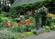 Ein Garten wie in England ? ein üppig blühendes Gartenparadies, in dem die unterschiedlichsten Pflanzen einen Platz finden. Stauden, Zwiebelblumen, Kletterpflanzen und Rosen bilden eine harmonische Einheit. / englischer-garten.jpg