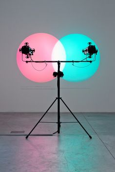 ill-mannered: Amalia Pica, Venn Diagram..... installation