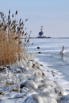 Winter at Marken Lighthouse, The Netherlands Amsterdam Holland, Holland Netherlands, Start Of Winter, Winter Time, Winter Scenery, Foto Art, Winter Pictures, Beautiful Places, Destinations