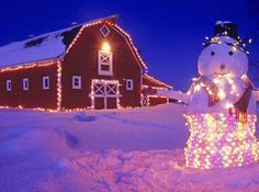 outdoor home decorating with led lights