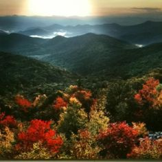 Asheville - going here at the end of September for a Fiber Arts workshop in the River Arts District. Nc Mountains, North Carolina Mountains, North Carolina Homes, Blue Ridge Mountains, Places To Travel, Places To Visit, Famous Castles, Biltmore Estate, That Way