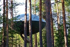 Treehouse hotel rooms | Weird hotels