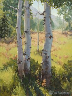 """""""Witness"""" 40x30 explores the play of light in an autumnal aspen grove."""