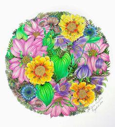 Colouring Pages, Adult Coloring Pages, Coloring Books, Tropical Flowers, Colorful Flowers, Antique Wallpaper, Colouring Techniques, Coloured Pencils, Color Pencil Art
