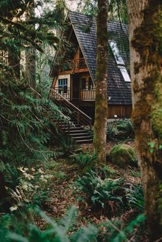 Sometimes you just need to get away. To just rejuvenate your mind, body, and spirit, and take a break from society. A cozy little house tucked far away in the woods is perfect to do so! Just think - a cozy country house in a natural woodland setting, a rustic, crackling fireplace, and most important