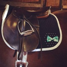 Hey, I found this really awesome Etsy listing at https://www.etsy.com/listing/208869738/custom-english-saddle-pads