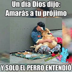 Projimo Animals And Pets, Baby Animals, Funny Animals, Cute Animals, I Love Dogs, Cute Dogs, Funny Spanish Memes, Faith In Humanity, Best Memes