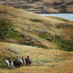 SUCH a beautiful place and how I would love to go Horseback riding @ Lake Diefenbaker, Saskatchewan. Saskatchewan Canada, Horseback Riding, West Virginia, Cool Places To Visit, East Coast, Beautiful Places, Scenery, Country Roads, Tours