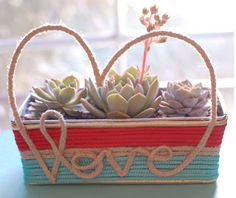 Simple craft ideas from decorators help prepare amazing Valentines Day gifts, creating beautiful handmade decorations with fresh flowers and small plants