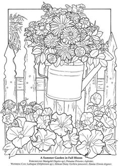 2232 Best Coloring Pages Adults And Kids Images Coloring Pages