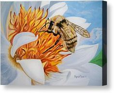 Busy Little Bee  Canvas Print by Sigrid Tune