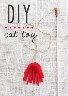 DIY homemade cat toy :: fleece wand :: from susantuttlephotography.com