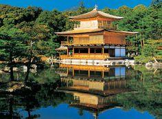 Metropolitan City in Japan