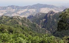 Thinking about my first trip to Aspromonte...  #Aspromonte #Calabria #Italy #Italia #Kalabria #Włochy #mountains #góry #gory #nature #natura