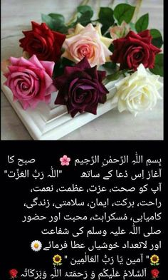Morning Dua, Good Morning Cards, Good Morning Good Night, Good Morning Images, Good Morning Quotes, Morning Post, Islamic Images, Islamic Messages, Islamic Pictures