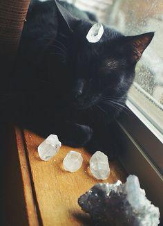 Black cat & crystals