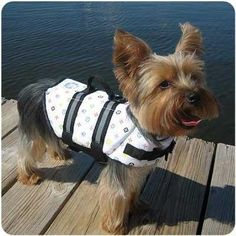 """""""The Louie"""" Designer Life Jacket - LARGE SIZE ONLY"""