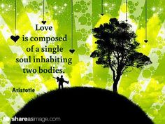 Love is composed of a single soul inhabiting two bodies. / Aristotle